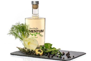 Momentum-Gin-Test