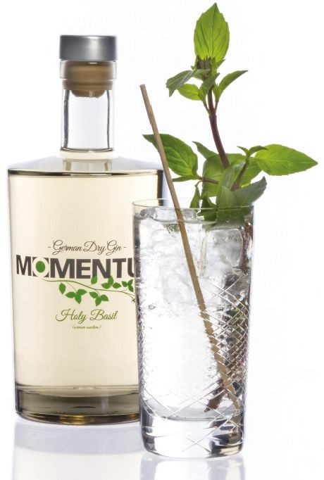 momentum_gin